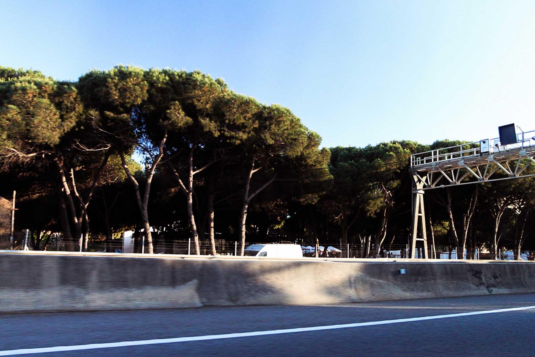 Дорога в Кастельдефельс с красивейшими шапками деревьев
