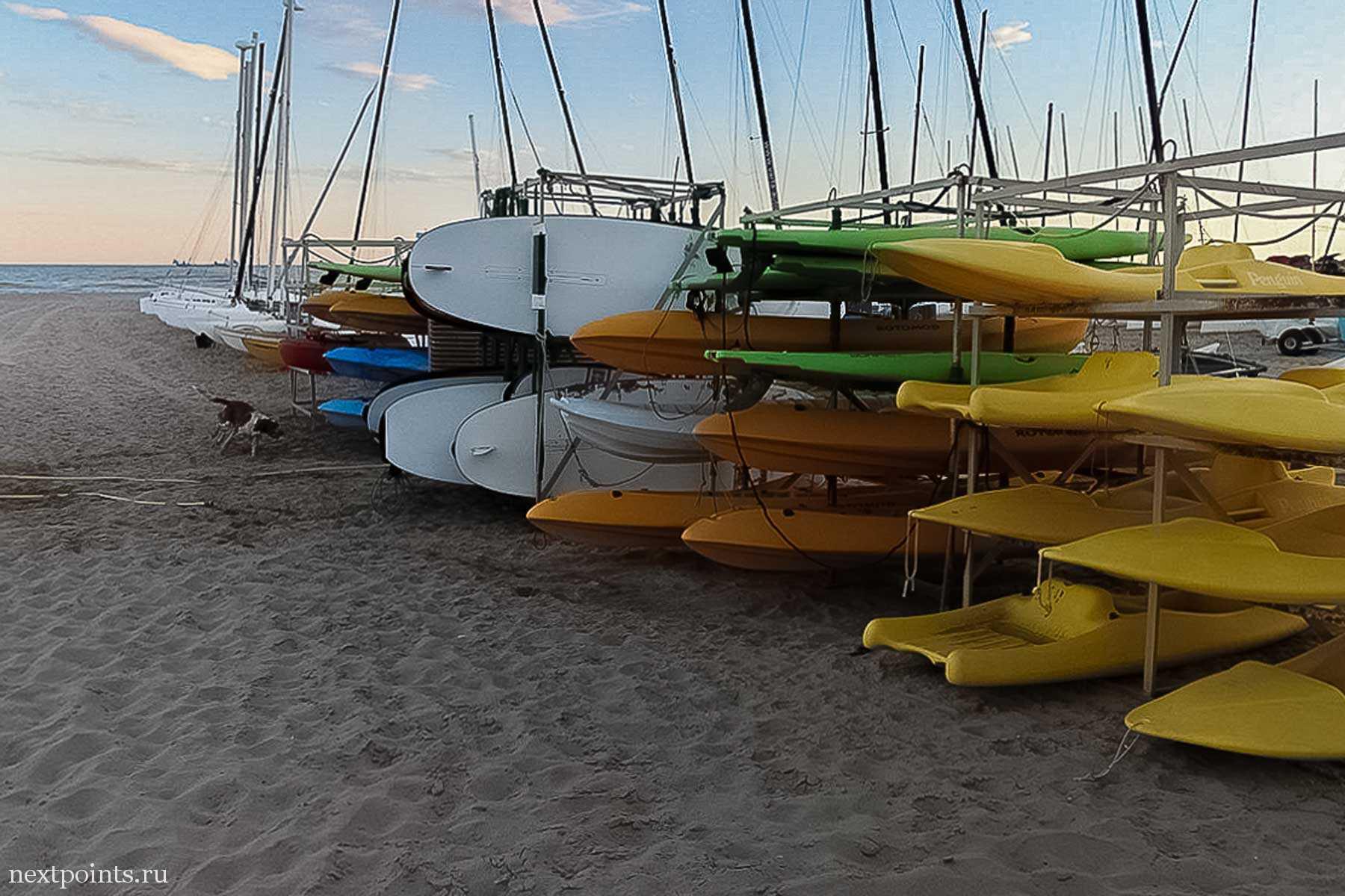 Между лодками собаки решили поиграть в догонялки. Высунув языки, они носились, не замечая прохожих.