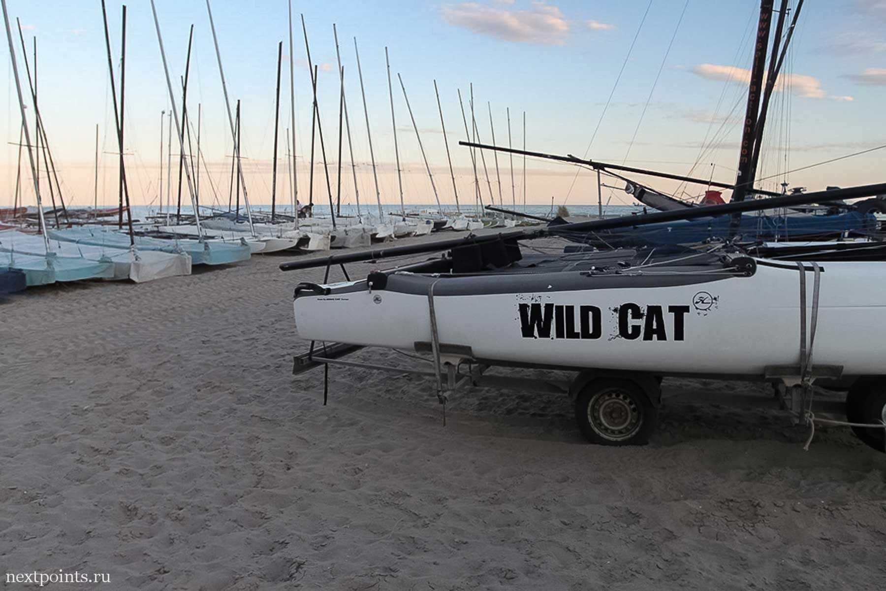 Стройный ряд лодок, заботливо укрытых от непогоды, ждет следующего свободного плавания.