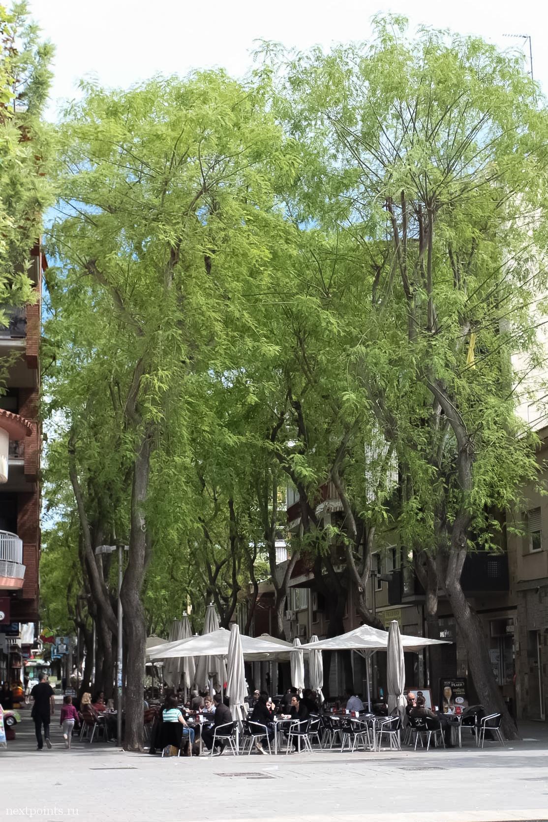 Природа и город Кастельдефельс