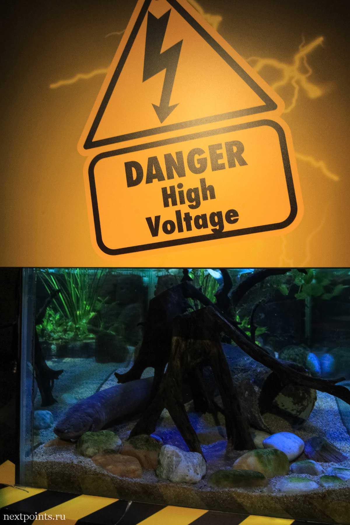 Опасно! Высокое напряжение!