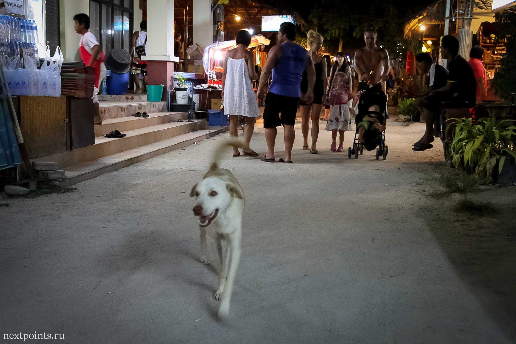 Вечерний променад жителей острова Ко Липе