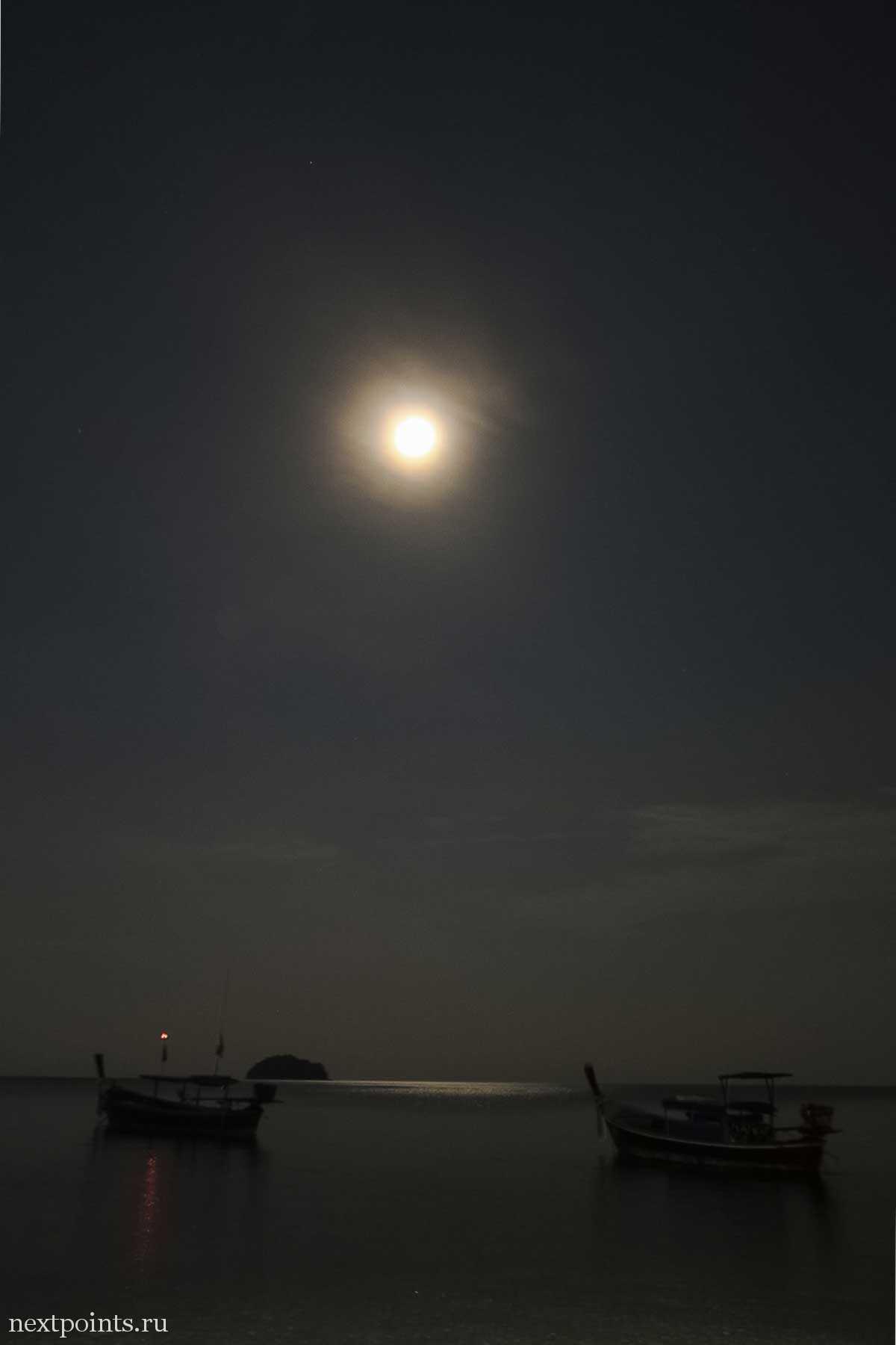 В тот вечер луна светила очень ярко, хорошо освещая все вокруг