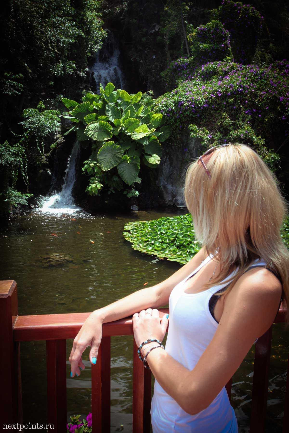 Водопад при входе в Лоро Парк (Loro Park)