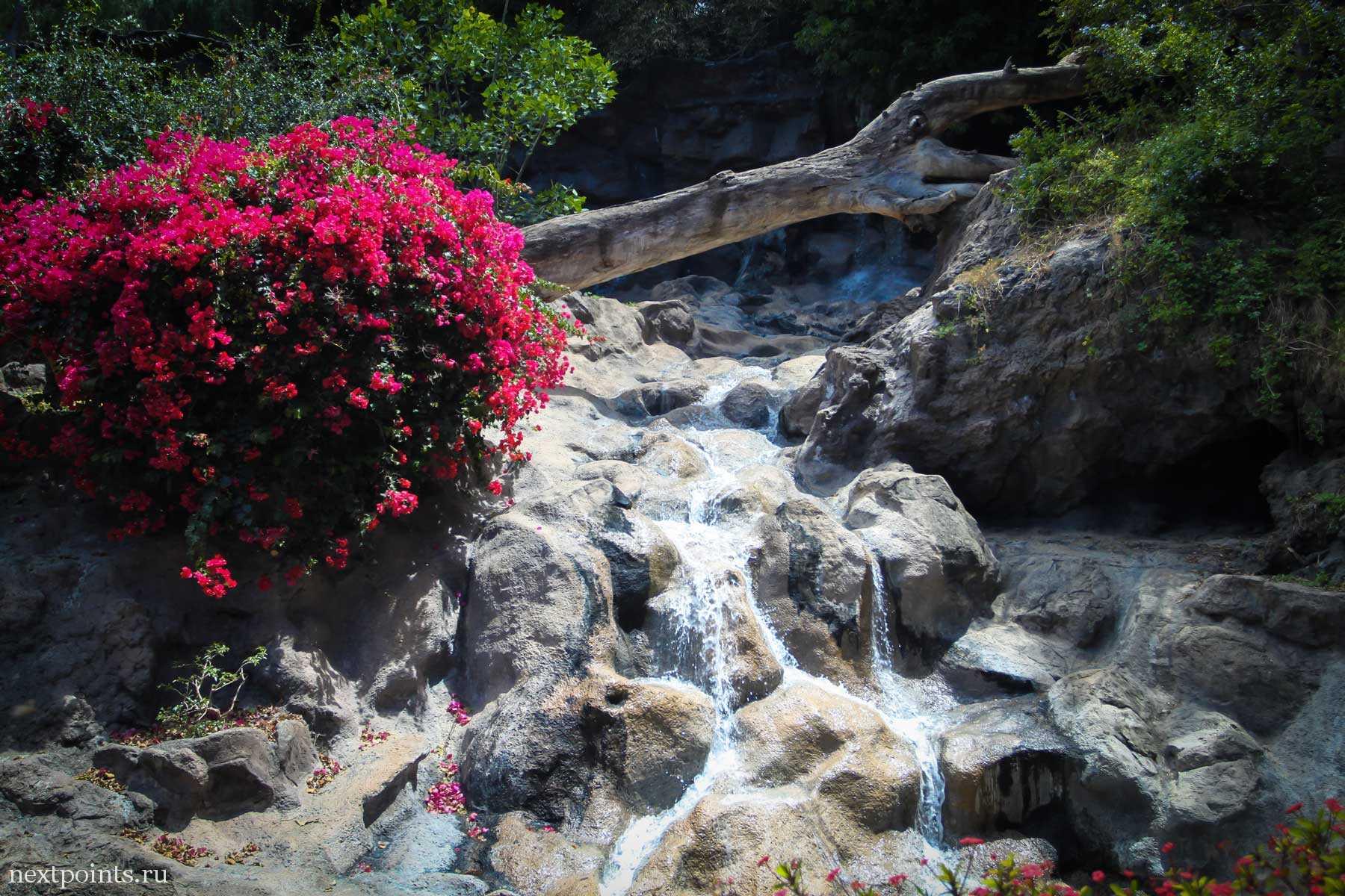 Водопад при входе в Лоро Парк