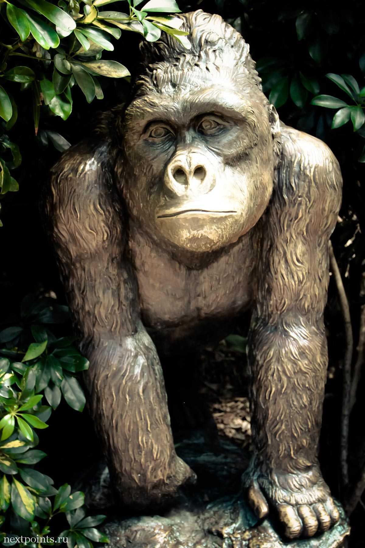 Бронзовая статуя гориллы