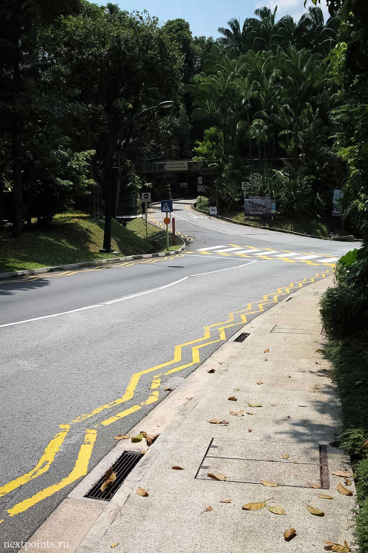Дорога на Сентозе