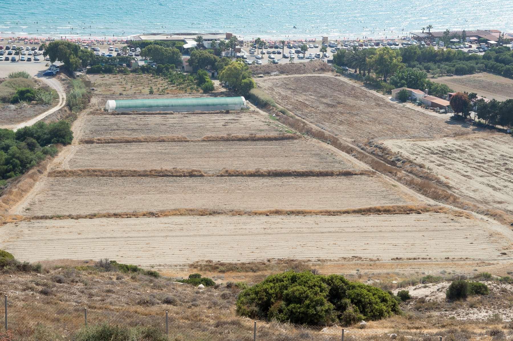 Плантации около пляжа Курион
