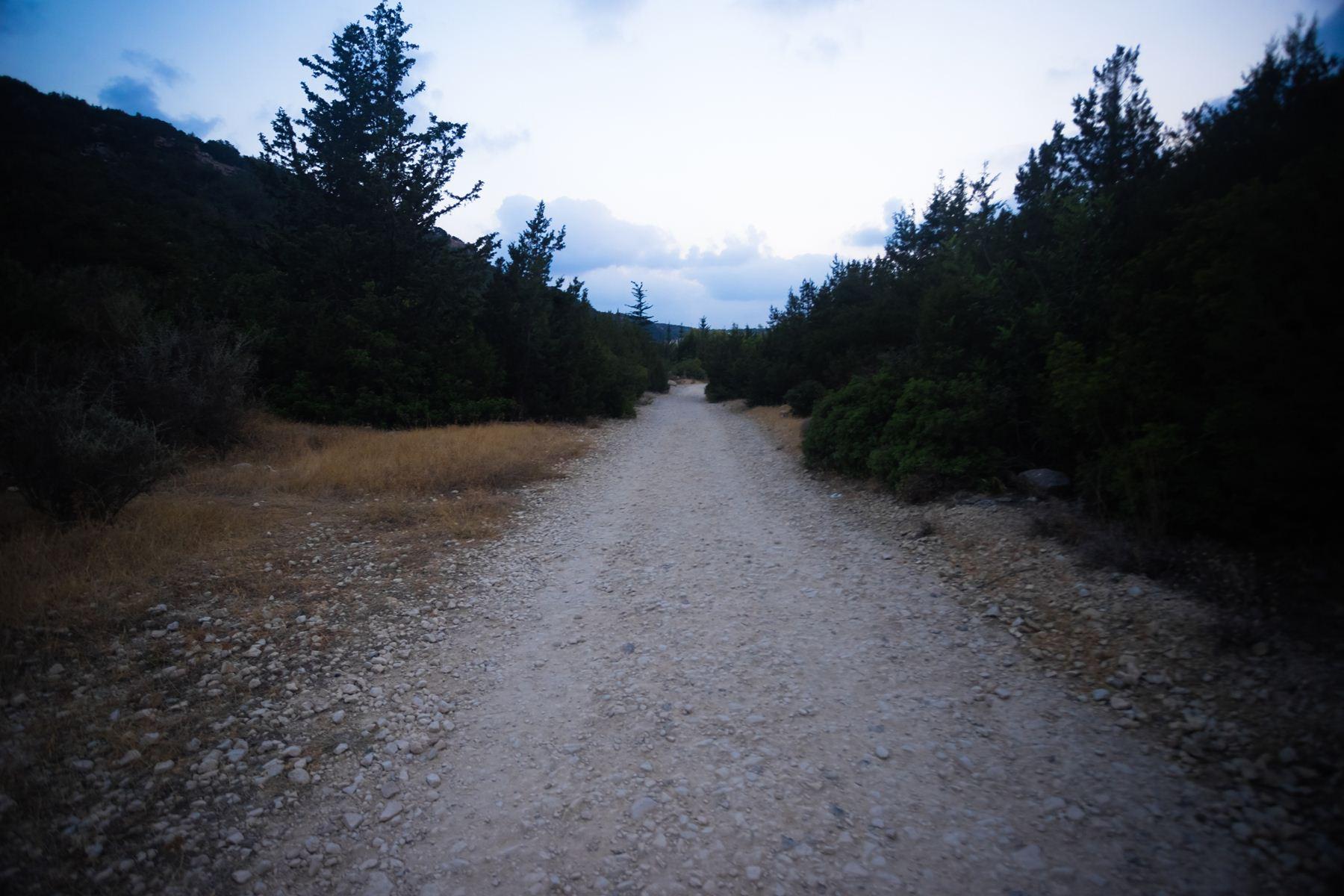 Путь по тропе вечером