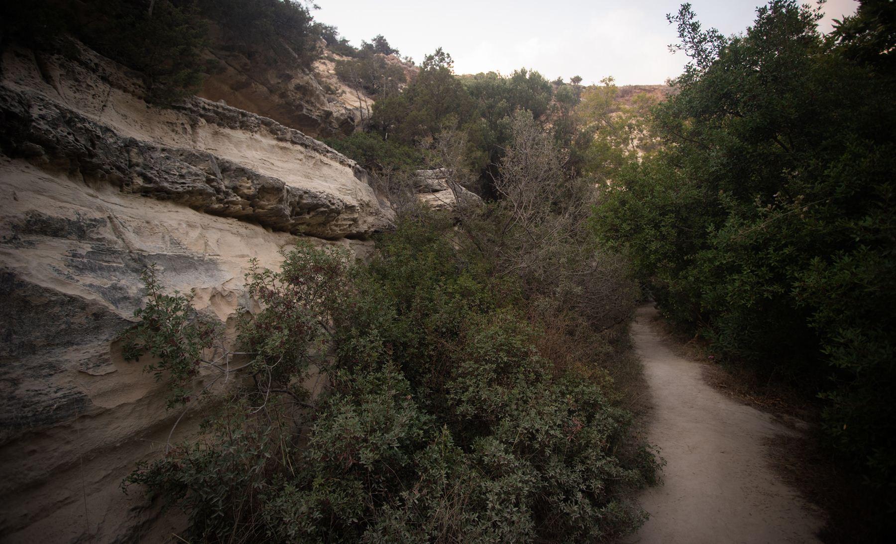 Путь в ущелье Авакаса