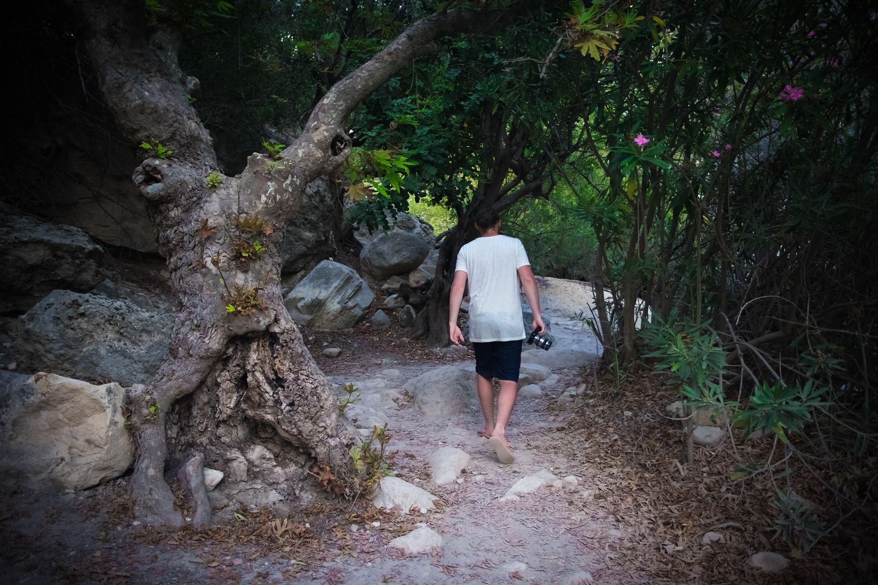 Загадочный зеленый мир Авакаса