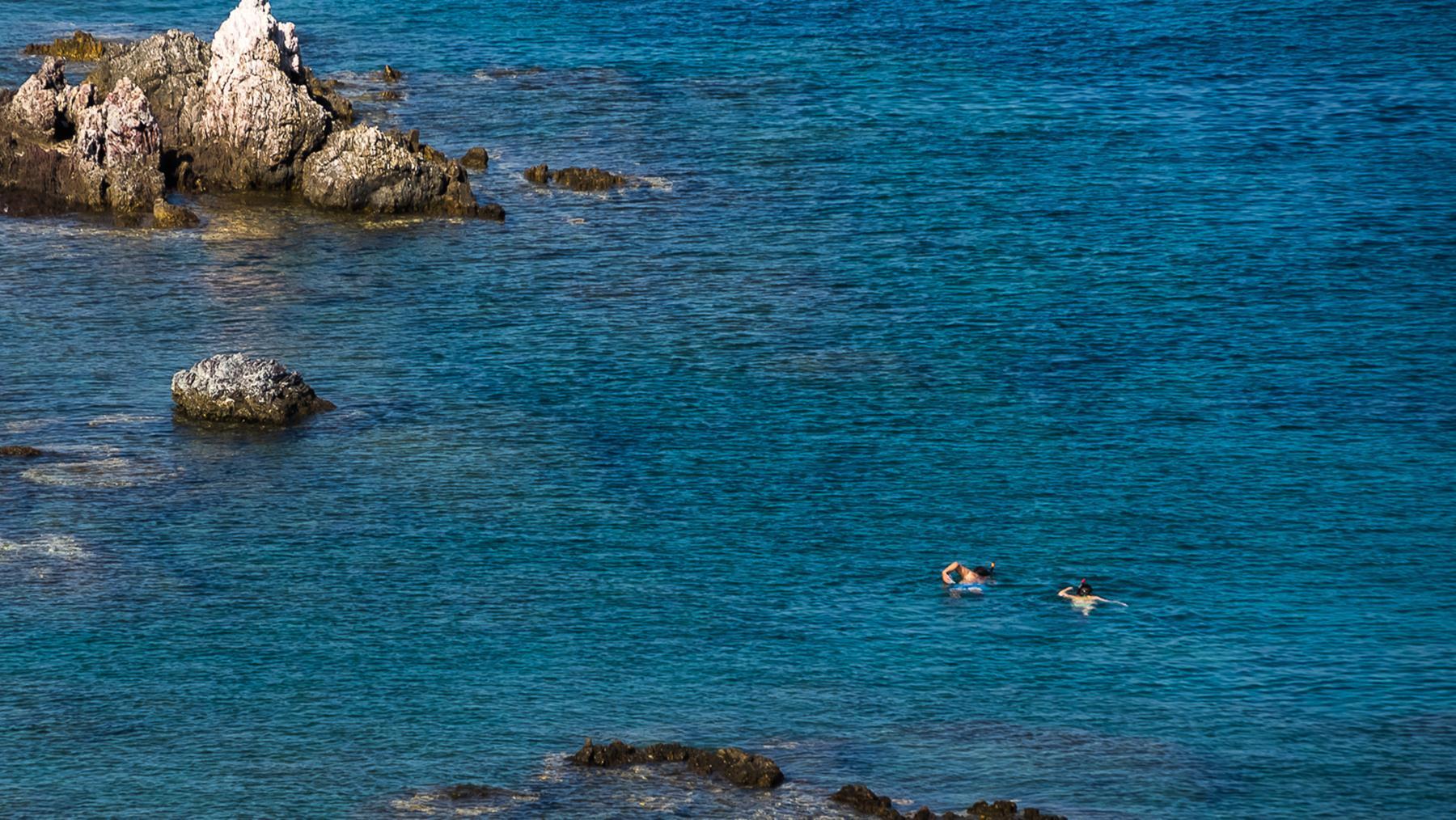 Снорклинг в море Акамаса