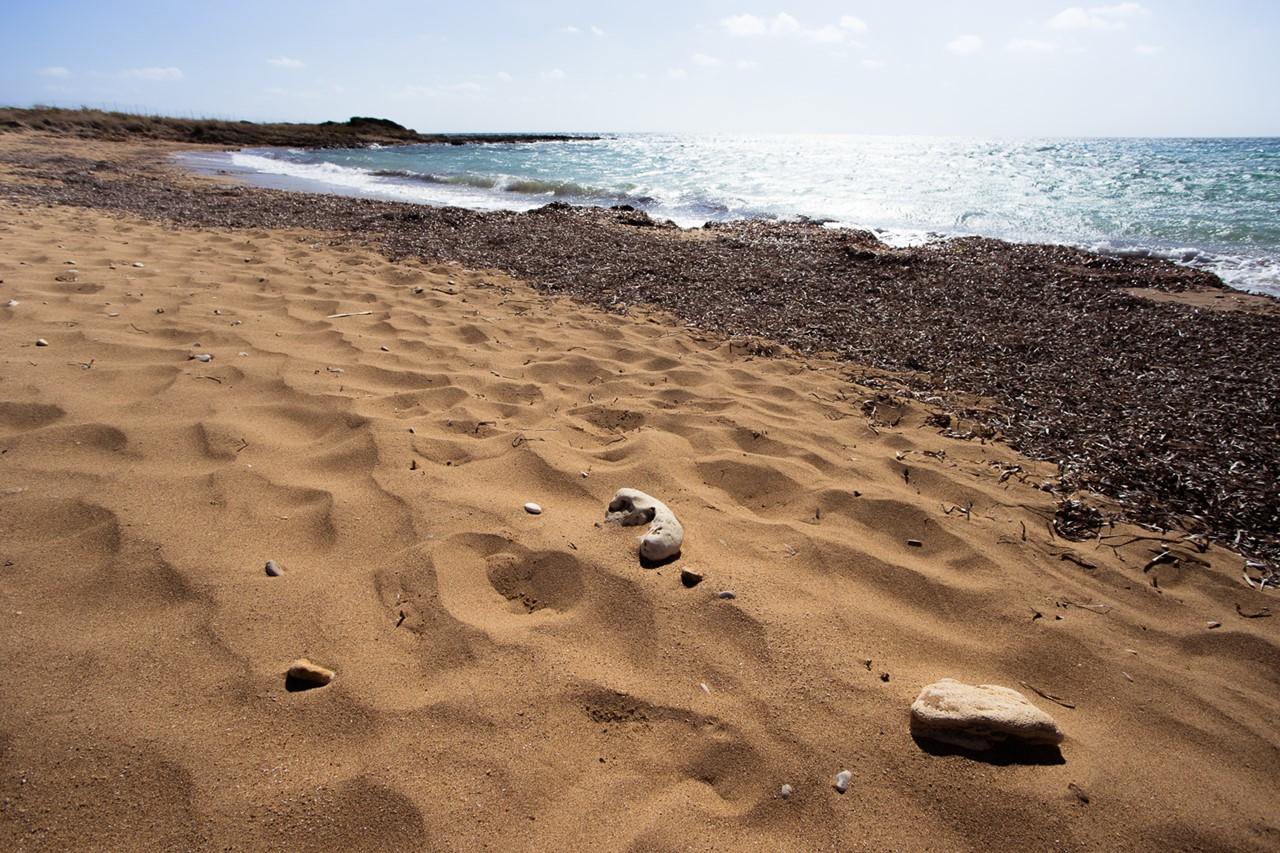 Сухие водоросли на пляже Врахинари (Vrahinari)