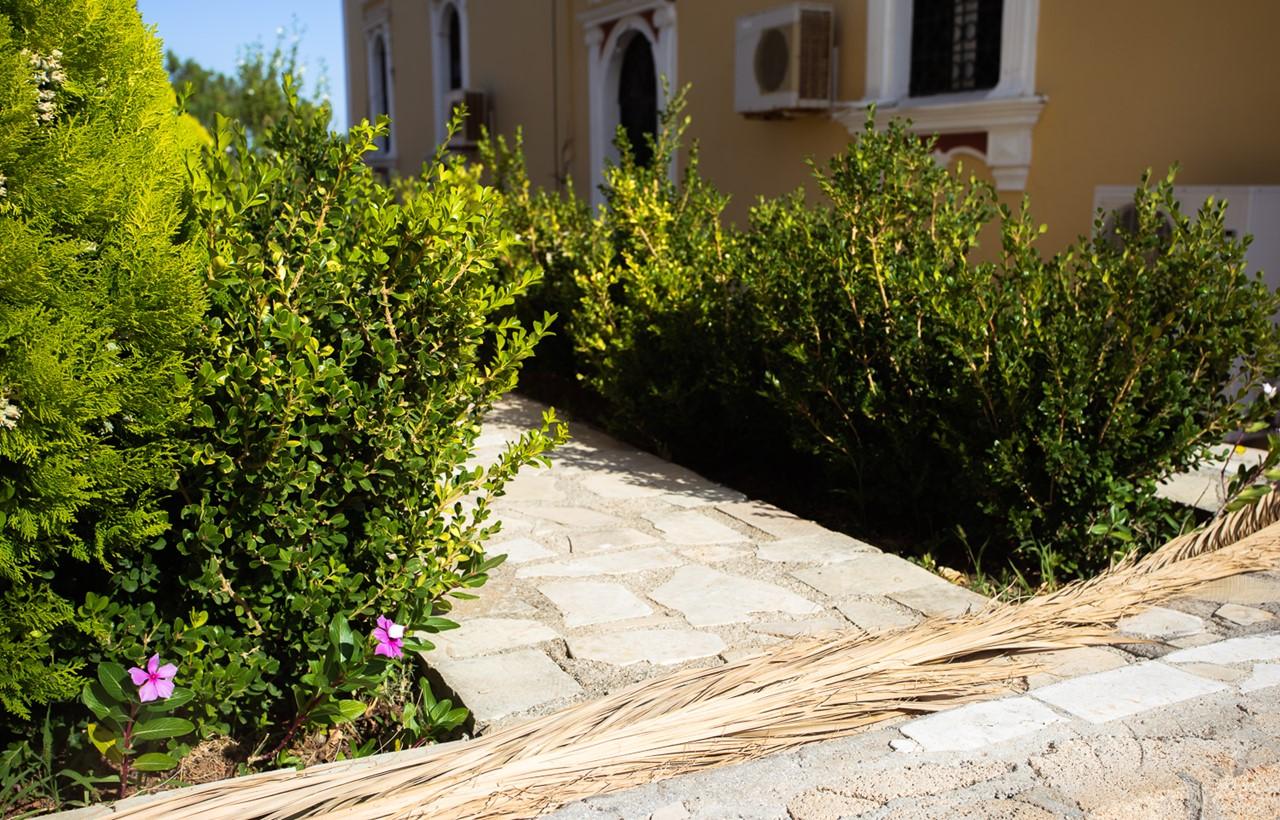 Сад на территории церкви Богородицы в Хавриата (Chavriata)