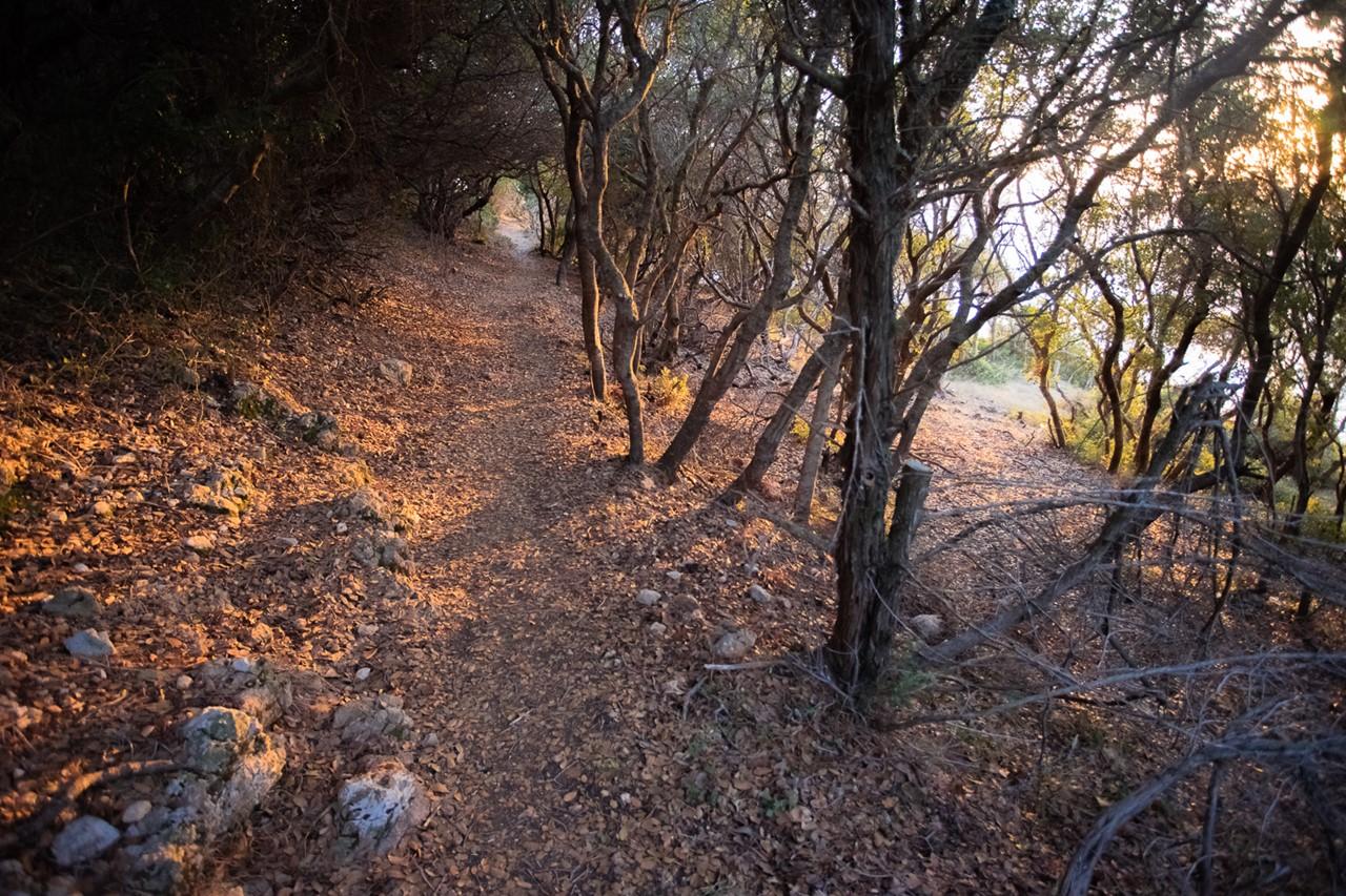 Тропа, ведущая к мысу поблизости от Кипуреона