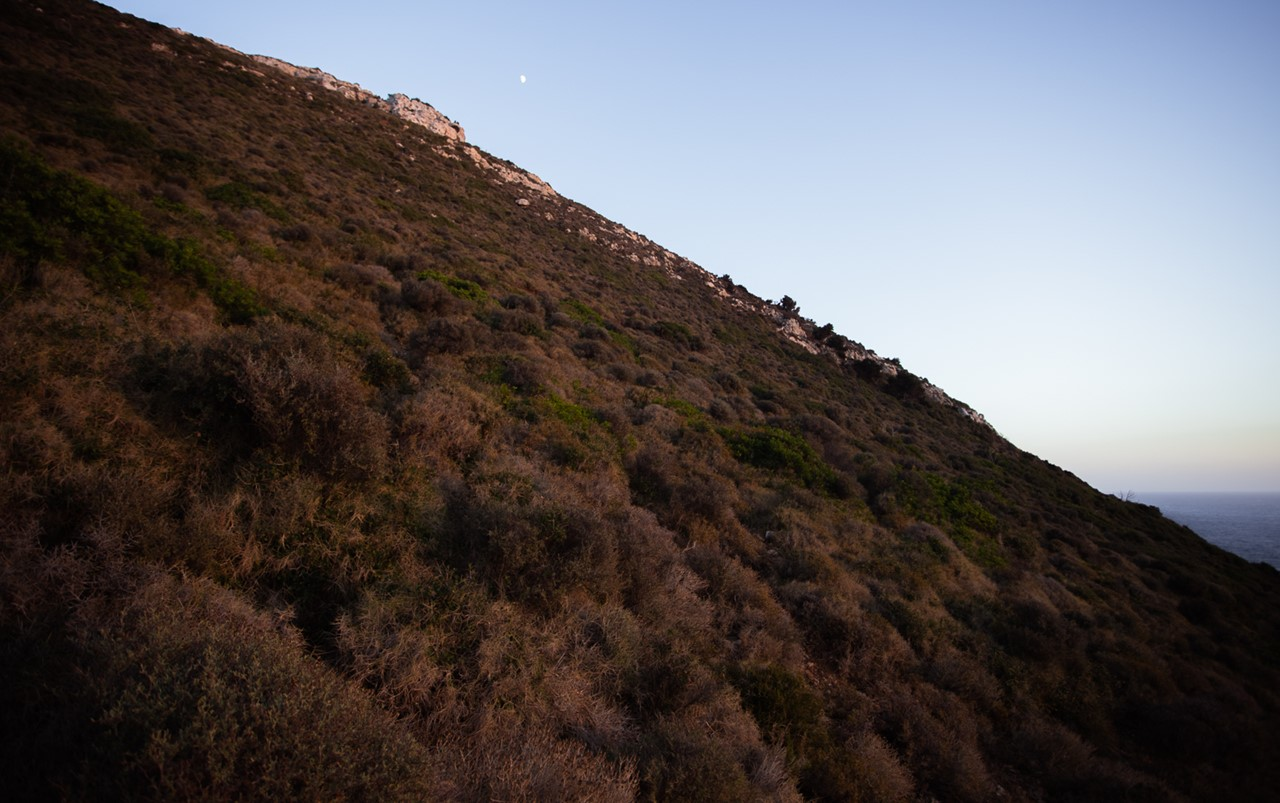 Если посмотреть наверх, можно увидеть высокую гору