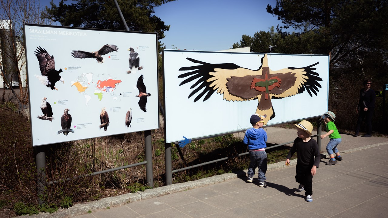 Стенды с птицами в зоопарке Хельсинки