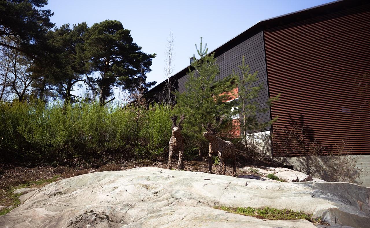 Окружающий мир зоопарка Хельсинки