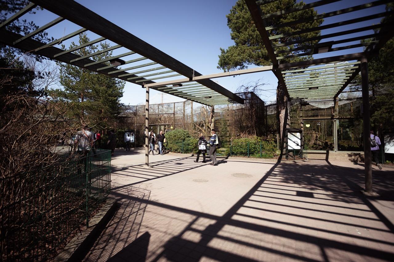 Долина кошек в зоопарке Хельсинки