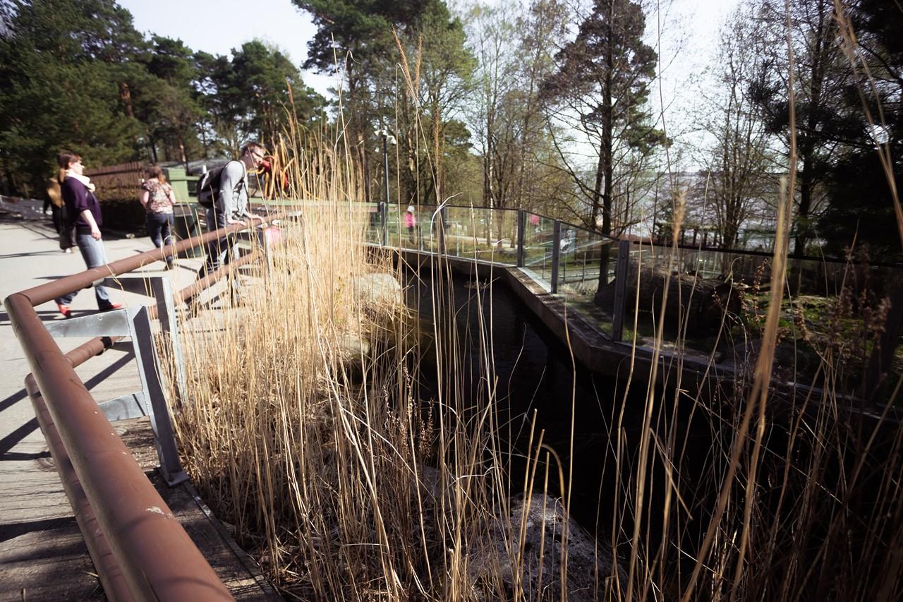Мини-речушка с водопадом