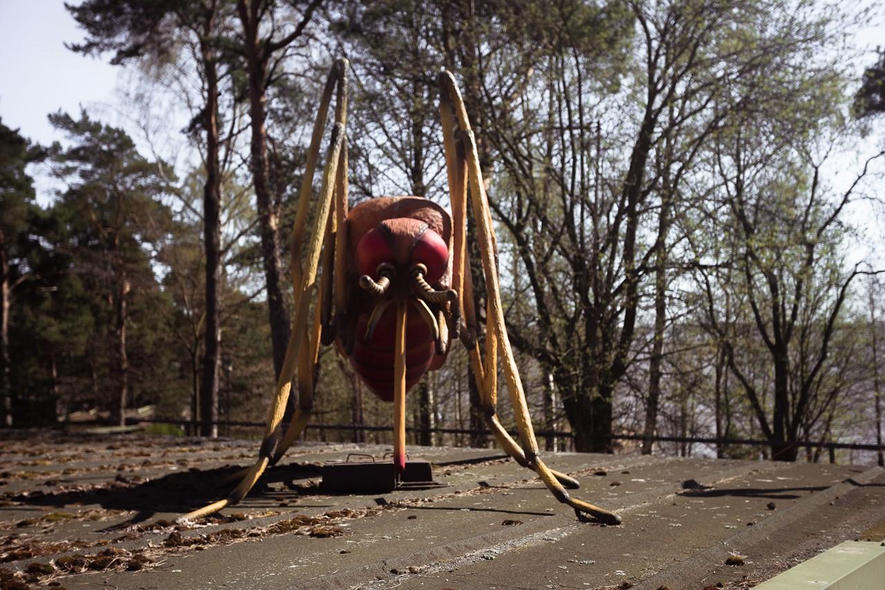 Москит-гигант в зоопарке Хельсинки