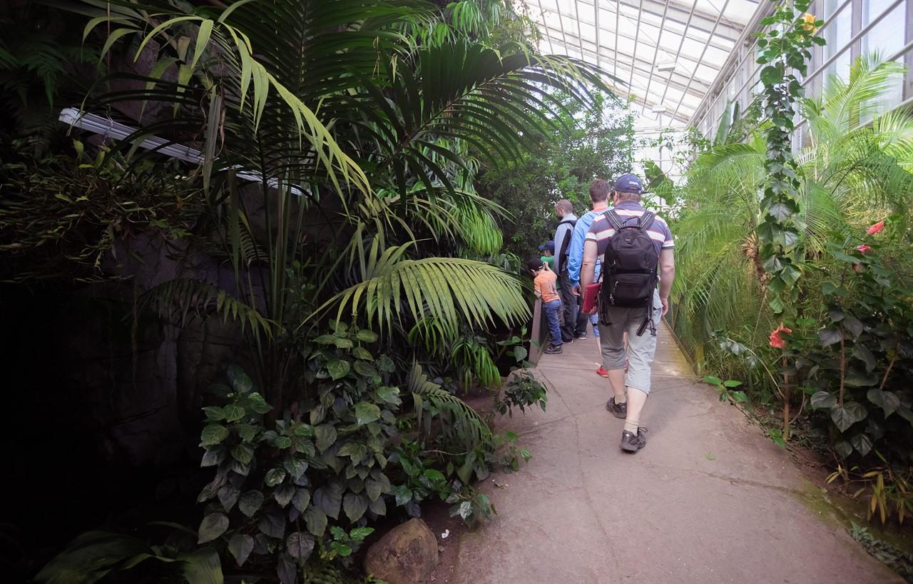 Азиатская часть экзотариума зоопарка Хельсинки