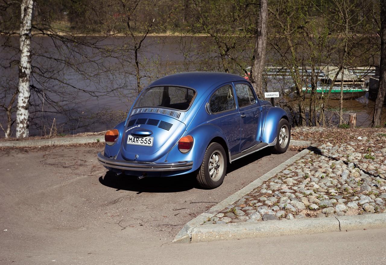 Голубой раритет на острове зоопарка Хельсинки