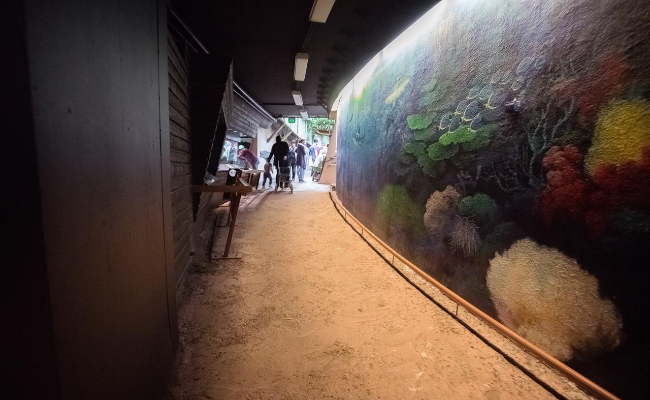Мини-океанариум зоопарка Хельсинки