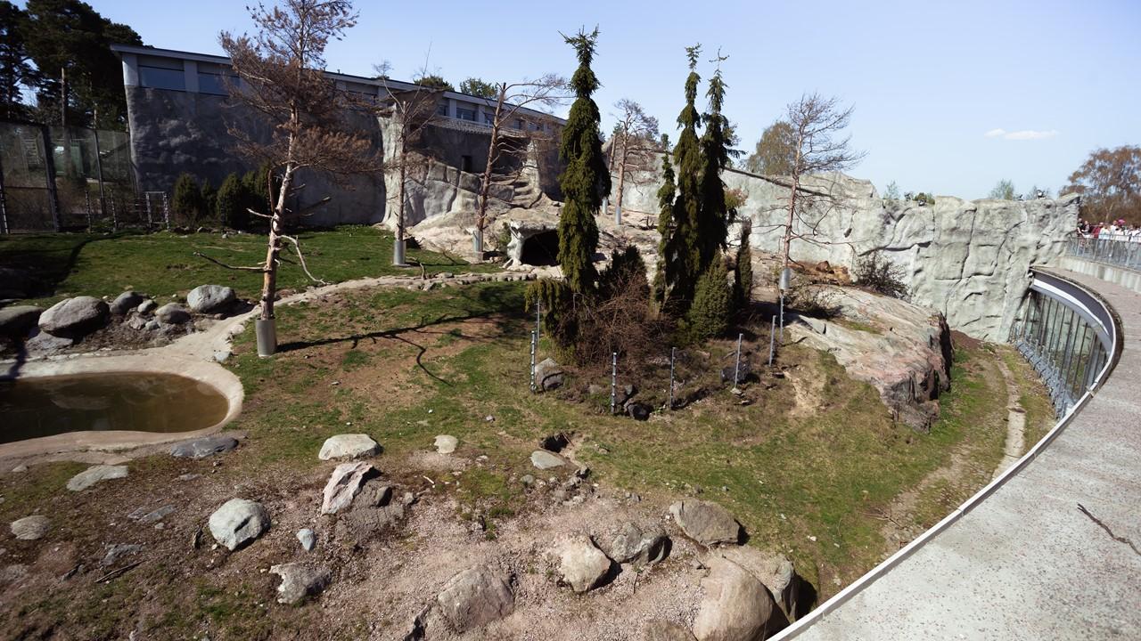 Вольер с медведями в зоопарке Хельсинки