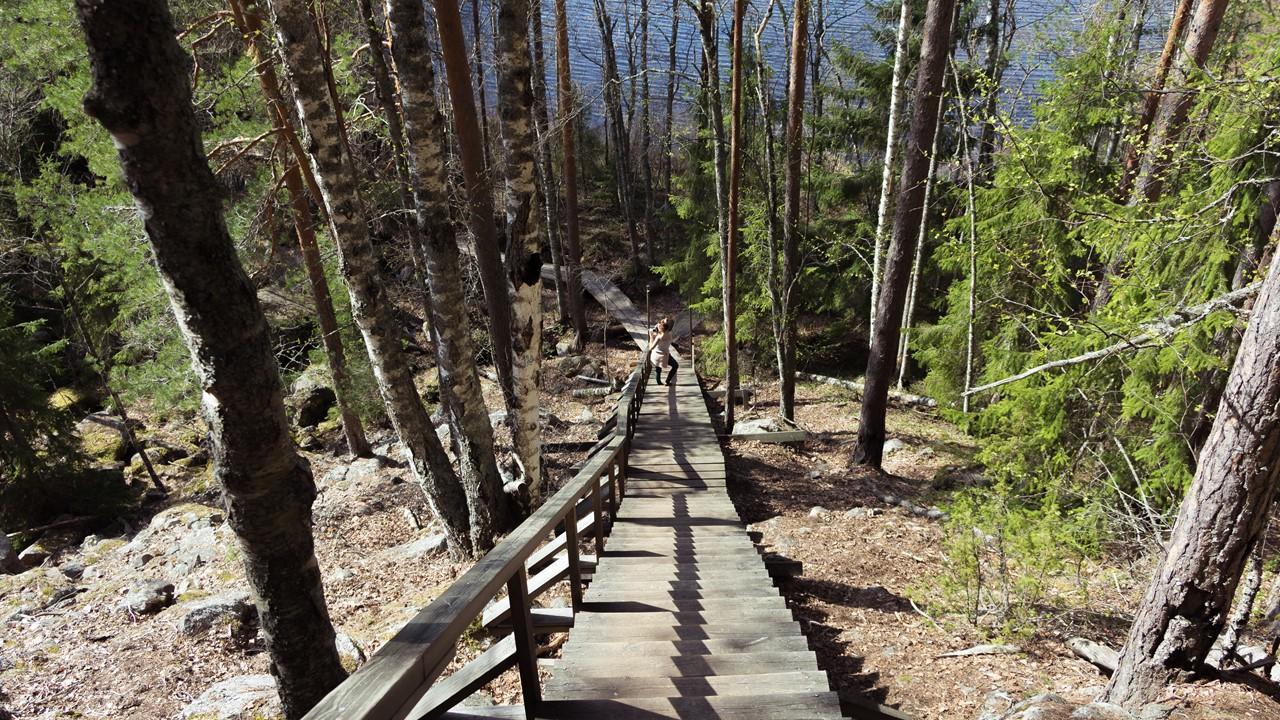 Лестница на смотровую площадку с горы Katajavuori