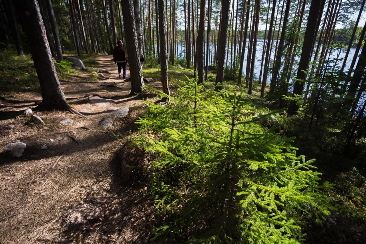 Проходим около озера Katajajärvi