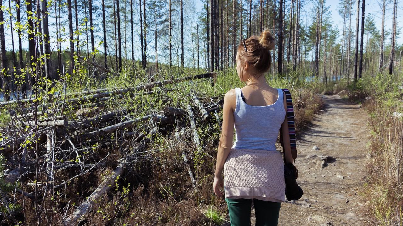 Необычное место с поваленными деревьями в Реповеси