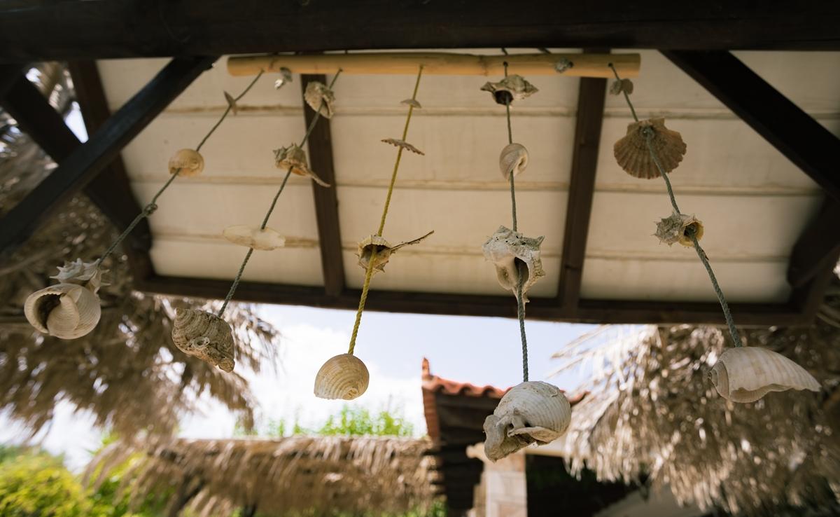 Висящие тропические ракушки