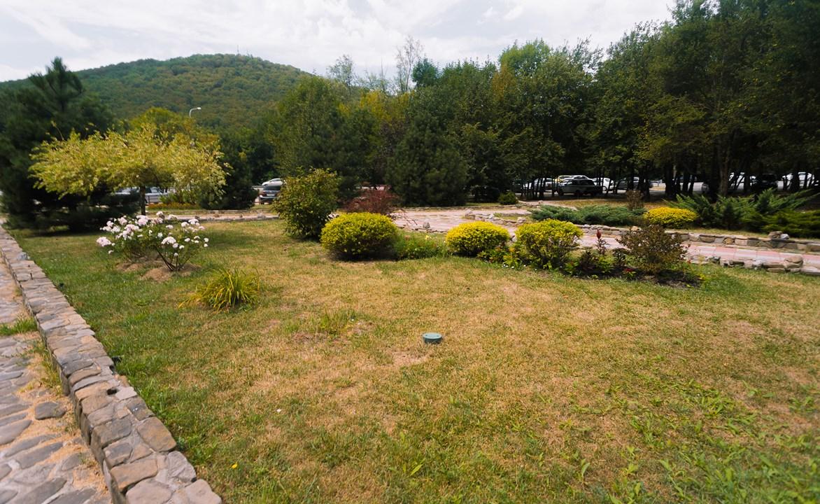 Сад, за которым ухаживает бабушка-садовник в Горячем Ключе