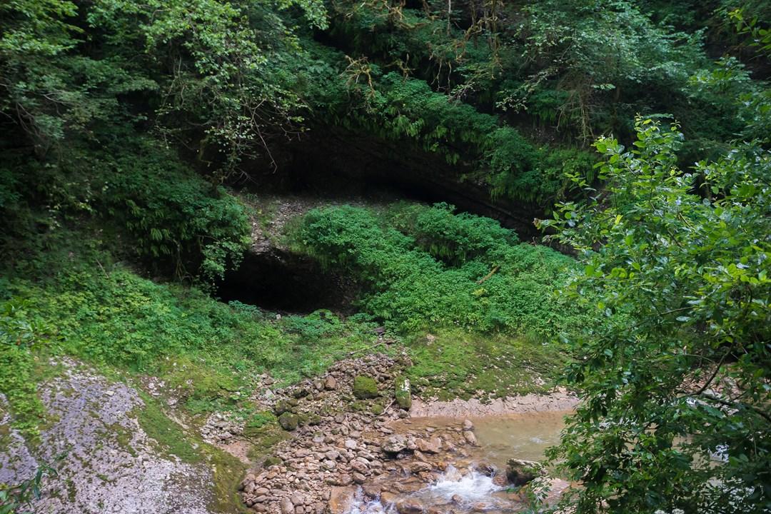 Жаль, что в Гуамском ущелье не встретить животных