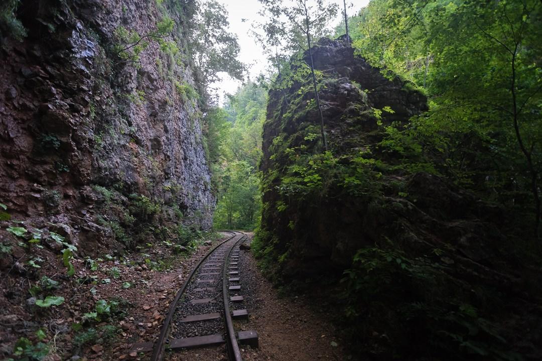 Живописные места вдоль железной дороги