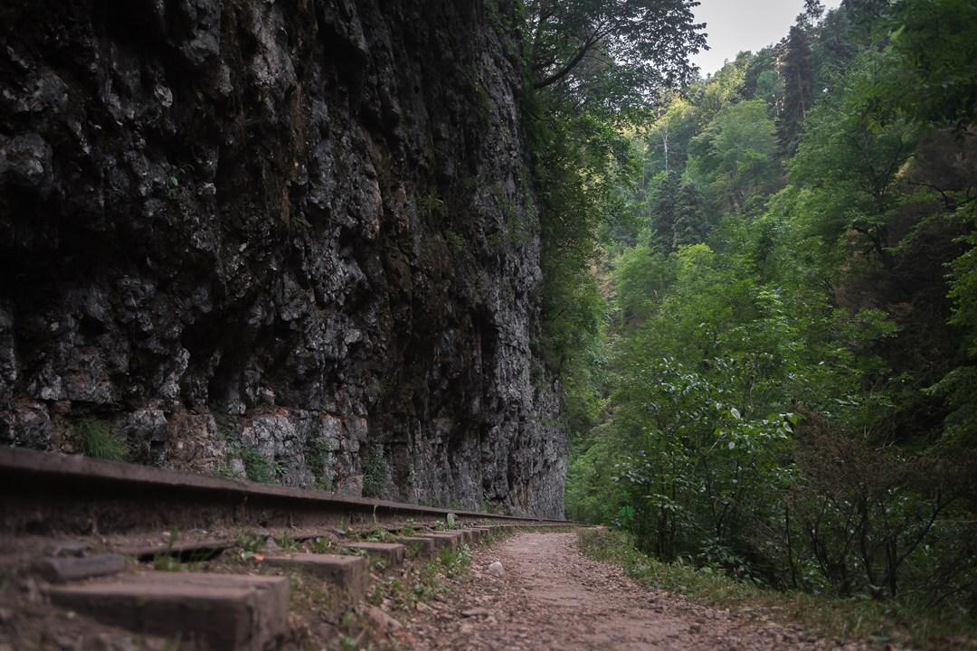 На уровне железной дороги Гуамского ущелья
