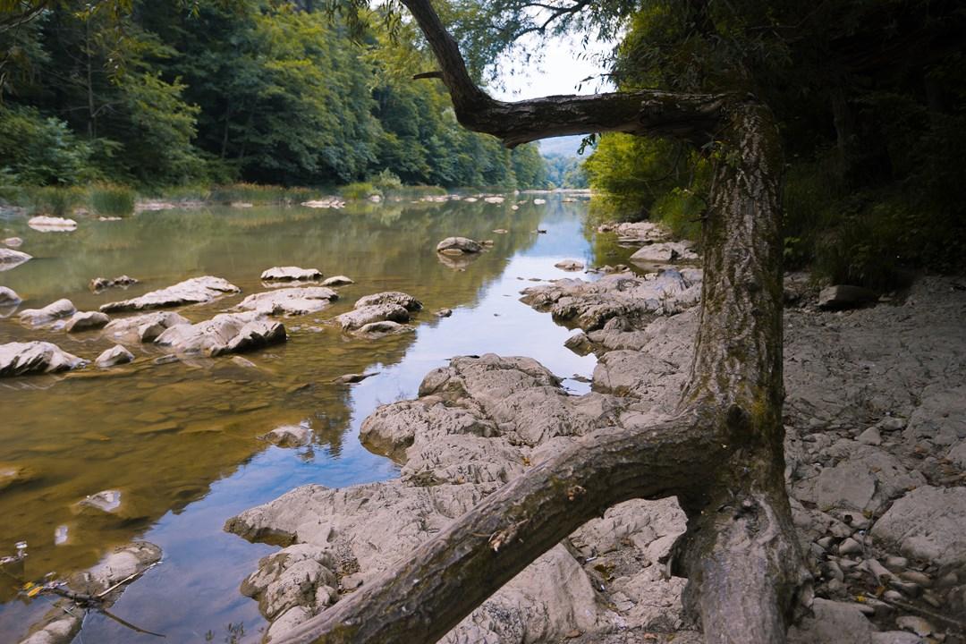Спокойная вода реки Псекупс