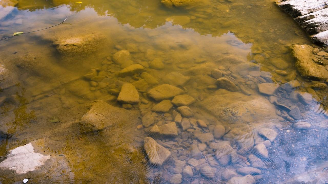 Прозрачная вода реки Псекупс