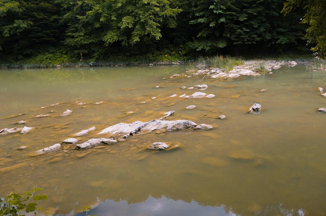 Вследствие активных вырубок леса река обмелела