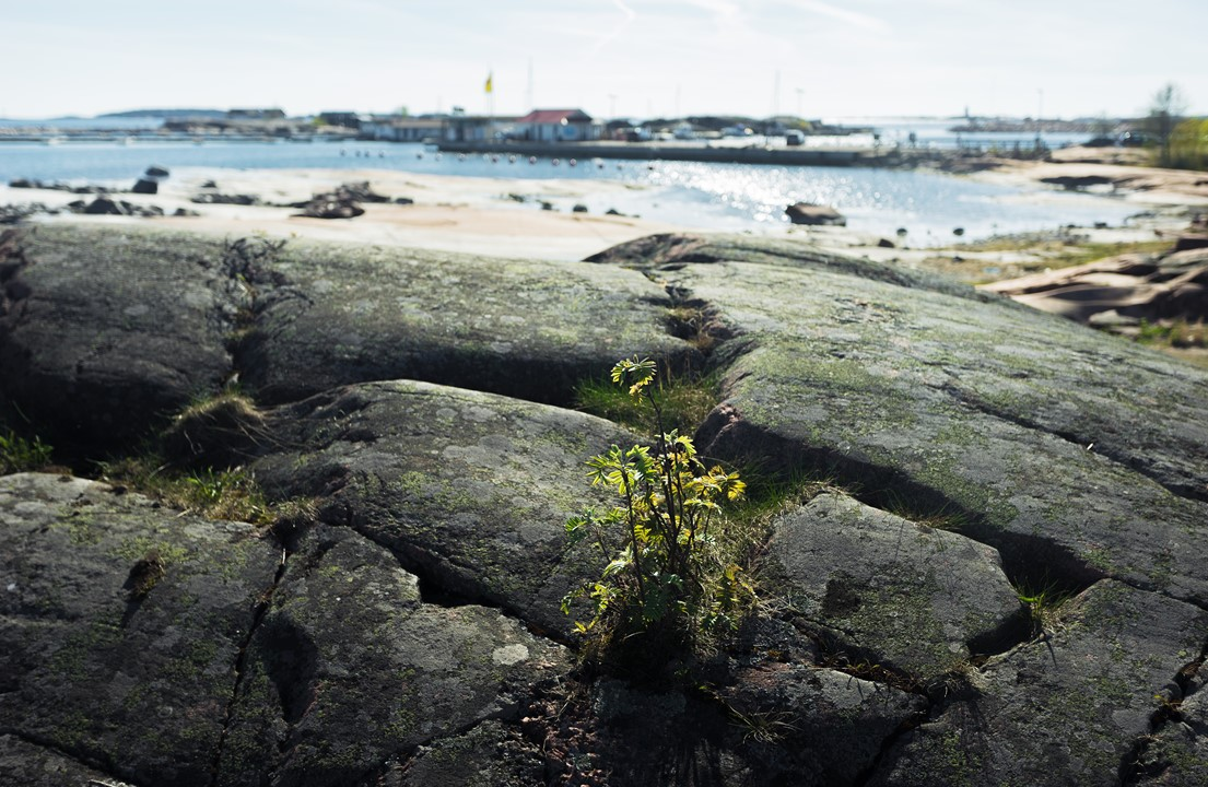 Ханко - милейшее место в Финляндии