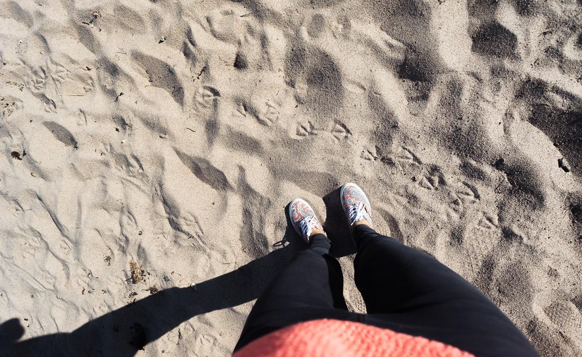 Финский гусь прошелся по песку