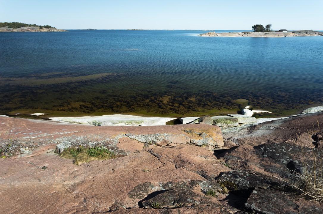 Прозрачная вода и заросший берег Ханко