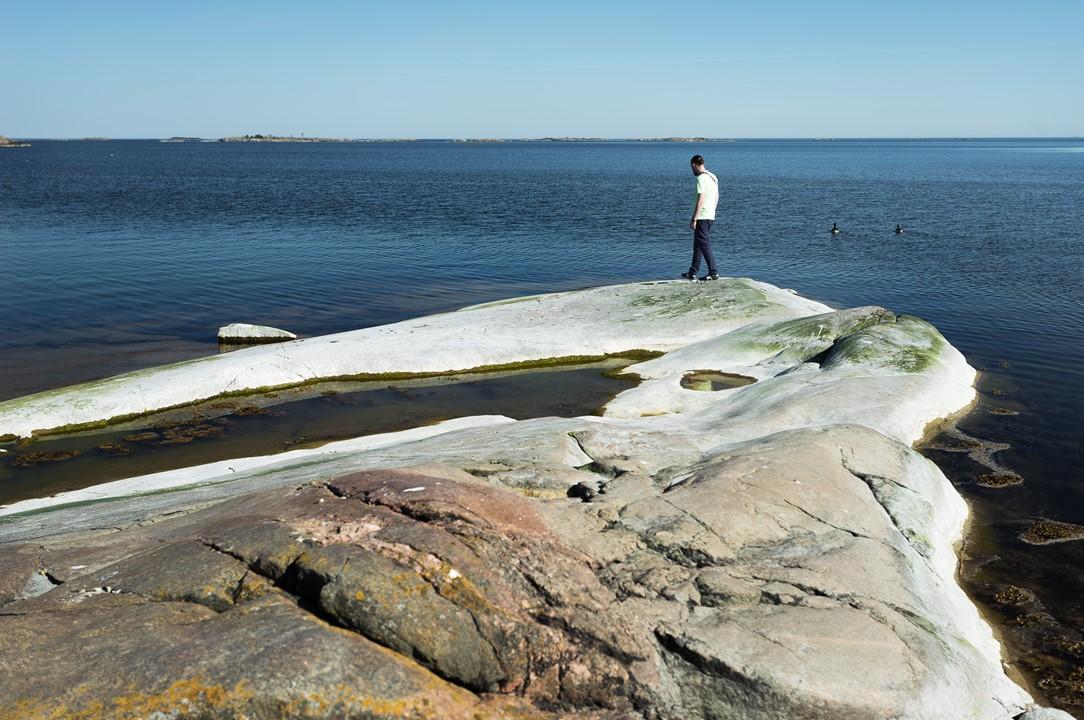 Гуси уплыли вдаль, подальше от опасного берега