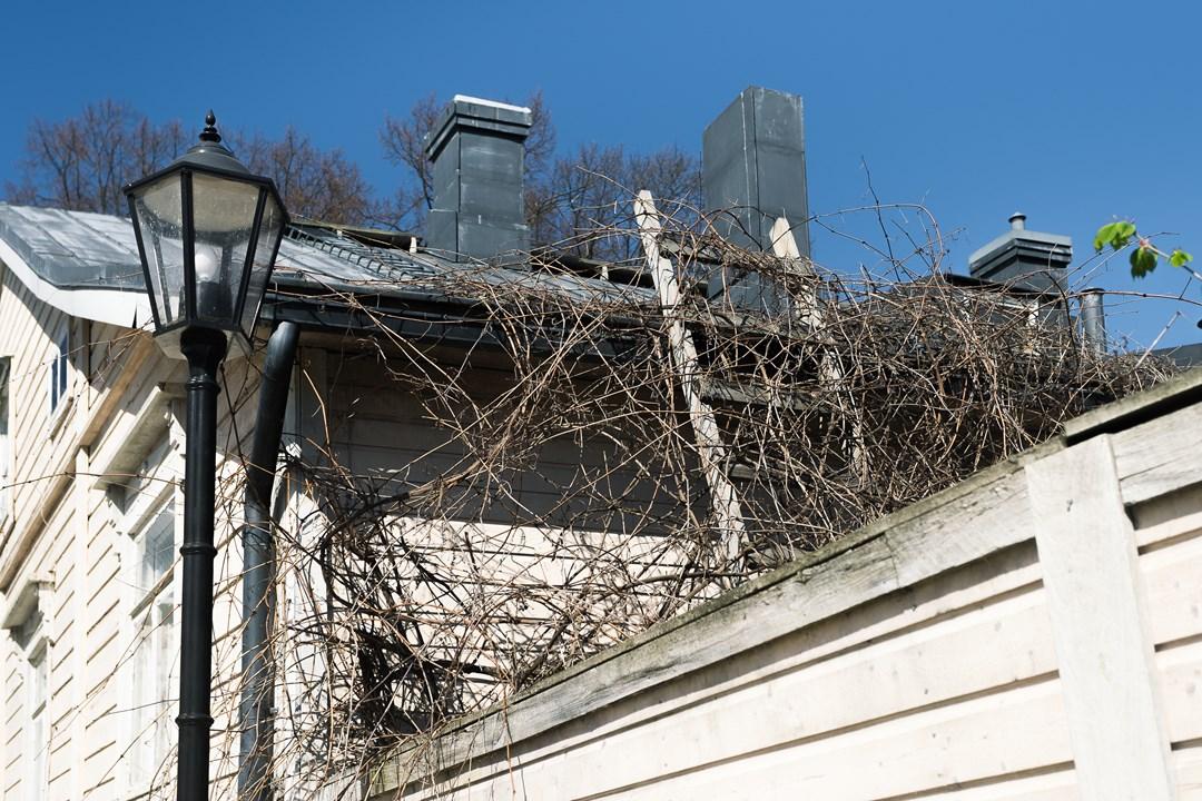 Лестница на крышу одного из домиков Расеборга