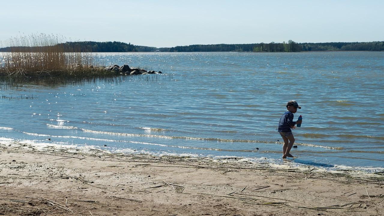 Мальчик играет на пляже Расеборга