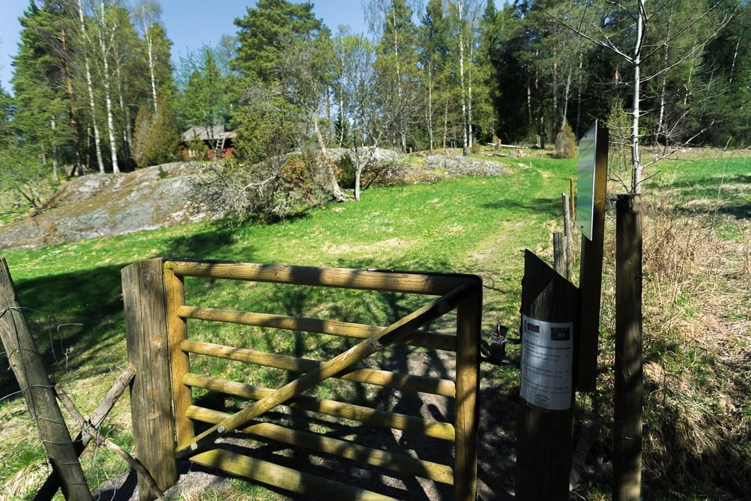 Калитка на пастбище с овцами, которую нужно закрывать