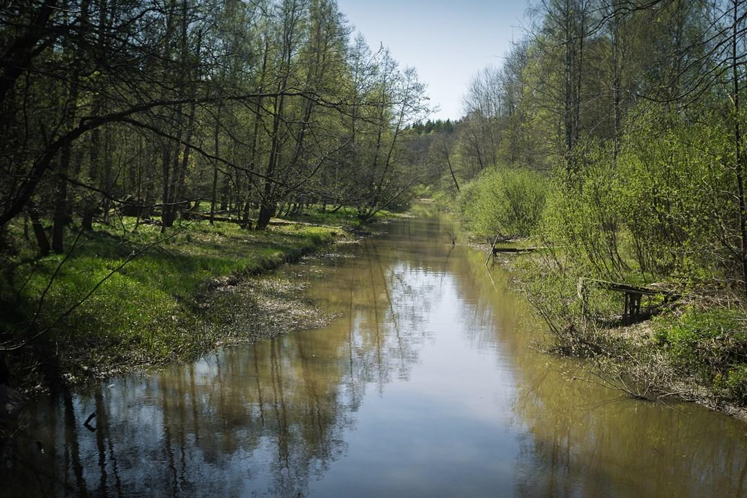 Речушка недалеко от Расеборгского замка