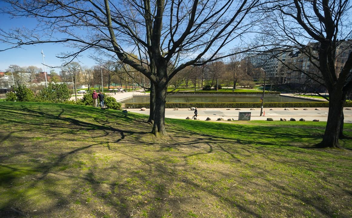 Здесь находится Ботанический сад Kaisaniemi botanic Garden