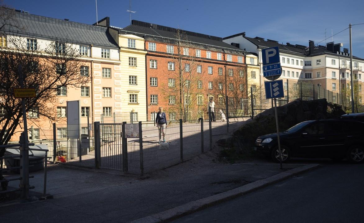 Место выгула собак в Хельсинки